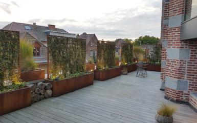 Terrasse 15